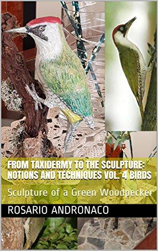 FROM TAXIDERMY TO THE SCULPTURE: NOTIONS AND TECHNIQUES VOL. 4 BIRDS: Sculpture of a Green Woodpecker (Dalla tassidermia alla scultura Book 1) (English Edition) por Rosario Andronaco