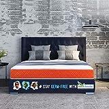SleepX Dual Comfort Mattress- Medium Soft & Hard (Orange, 78x60x5)
