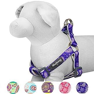 Blueberry Pet Soft & Comfy Step-in Paisley Flower Print Dog Harness, Chest Girth 42cm-54cm, Violet, Adjustable Harnesses… 11