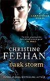 Dark Storm: Number 23 in series ('Dark' Carpathian)
