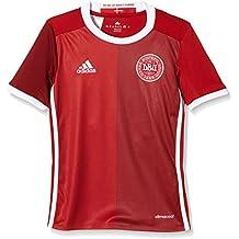 adidas Camiseta Niños Dinamarca Réplica, infantil, color Rojo - Power Red F05/Craft Red F12, tamaño 10 años (140 cm)