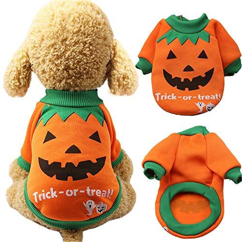 Lomire Ropa de Perros Gatos Pequeños Halloween, Abrigo Traje Divertido Suéter de Algodón Caliente Suave Camiseta Casual para Mascotas Cachorro, Naranja- L