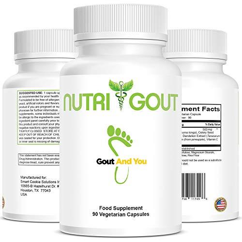 NutriGout - Rezeptur zur Unterstützung gegen Harnsäure - Hergestellt in den USA - 500 mg 90...