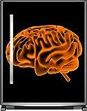 Wallario Sticker/Aufkleber für Kühlschrank/Geschirrspüler/Küchenschränke, selbstklebende Folie - 65 x 80 cm, Motiv: Menschliches Gehirn in leuchtend orangener Farbe