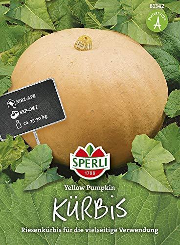 Kürbissamen - Riesenkürbis Yellow Pumpkin von Sperli-Samen