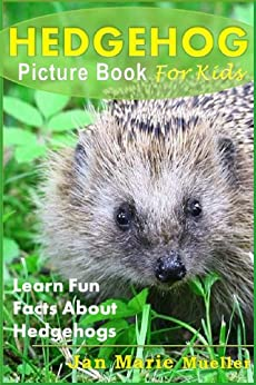 Image result for natures amazing series hedgehogs