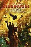 Stalker. Picnic Extraterrestre (Breve)