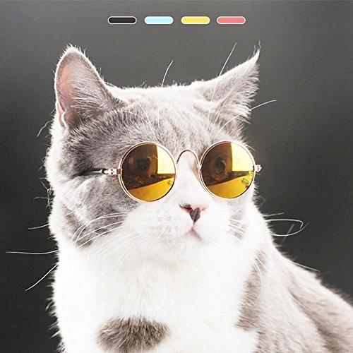 HYGMall 1PC Pet Supplies Nette AC + Metall Haustier Katze Sonnenbrille Super coole Brille Größe Welpen Kätzchen klein für Fotografie Auge Verschleißschutz Weihnachtsgeschenke Sonnenbrille (Gelb)
