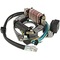 MagiDeal 1x Ignition Magneto Estator Placa 2 Bobinas DY100 6 Hilos Repuesto de Moto para 50