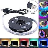 USB LED Strip Wasserdicht 5050 RGB WS2812B LED Streifen Lichtleiste Lichter Stripe Leuchte 5V USB Kabel für PC Notebook Laptop TV Hintergrundbeleuchtung Flachbildschirm Werbetafel Dekoration, 100 CM 30 Ledsg, 100 CM 30 Leds