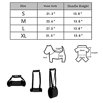 Dog Lift Support Harness Help Elderly Injured Disabled Arthritis ACL Pet Stand Up/Walk/Climb Stairs/Crawl into Car… 5