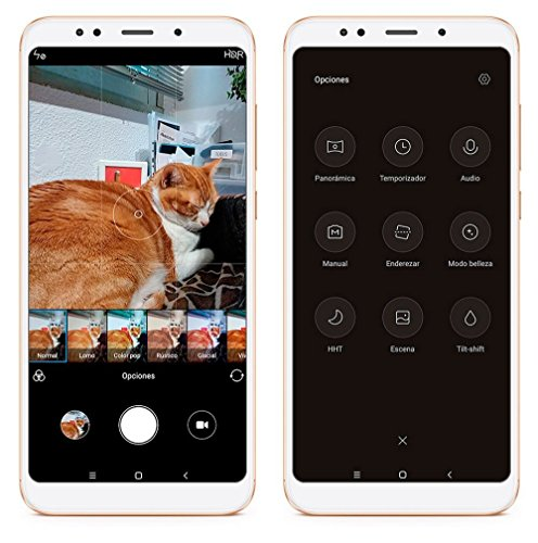 Xiaomi-Redmi-5-Plus-Dual-SIM-Oro-152-cm-599-4-GB-64-GB-12-MP-Android