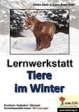 Lernwerkstatt Tiere im Winter von Stolz, Ulrike (2006) Broschiert