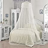 Generic White, Product Dscription : Summer Insect Prevention Elegant Round White Lace Bed