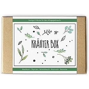 Kräuter Box: Saatgut und Samen für die Küche