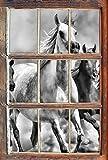 Stil.Zeit Monocrome, Western Pferde in Wüste mit Fohlen Fenster im 3D-Look, Wand- oder Türaufkleber Format: 92x62cm, Wandsticker, Wandtattoo, Wanddekoration