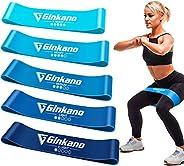 Haquno - Fasce Elastiche per Fitness, Elastiche di Resistenza, con Guida di Esercizi, 5 Bande Elastiche da Fit
