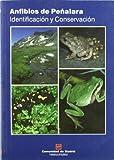 Anfibios de Peñalara : identificación y conservación