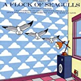 A Flock of Seagulls: Best of Flock of Seagulls (Audio CD)