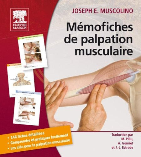 Mmofiches de palpation musculaire