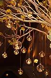 de Lot de 50 x 8 cm Sphère de fond plat en verre Plante Terrariums Globe à...