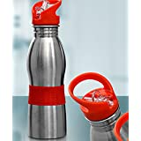 AE 500 ML Stainless Steel Water Bottle Sipper For School Or Sports - Assorted Colours For Kids,Teens,Travellers, Camping, Sports, Office Desk,School Kids Water Supply