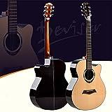 GFEI _ guitare, guitare folk guitare d