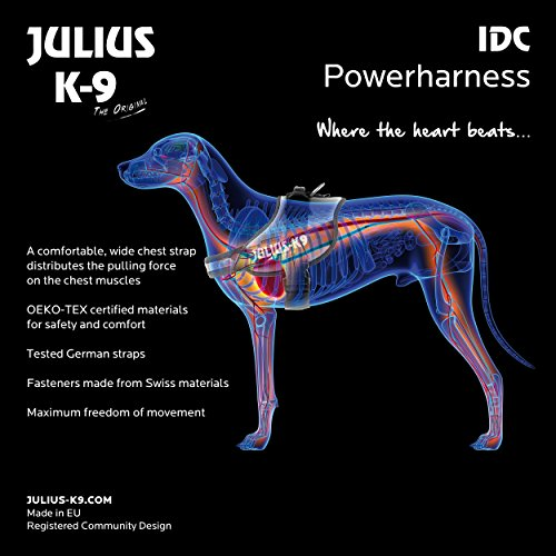 Julius-K9 16IDC-FOR-M