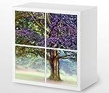 Set Möbelaufkleber für Ikea Kallax 4 Fächer/Schubladen Baum bei Nebel Landschaft Kat10 Wald Buche Aufkleber Möbelfolie sticker (Ohne Möbel) Folie 25H306