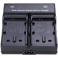 TOOGOO(R) Dual Channel Chargeur de batterie pour Batterie SONY NP-FW50 BC-VW1 Sony NEX-3 NEX-5 NEX-6 NEX-7 NEX-C3 NEX-F3 Alpha DSLR SLT