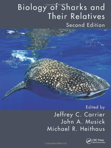 Zoom IMG-3 biology of sharks and their