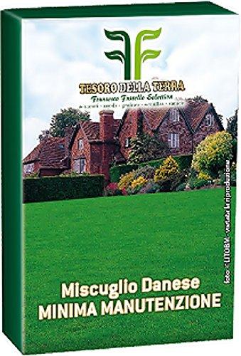 Galleria fotografica 1 Kg Miscuglio Danese Minima Manutenzione - Sementi Per Prato In Confezione Originale - Prodotto in Italia - Giardini e prati decorativi