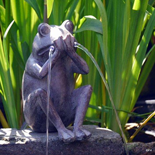 """Gartenfigur Wasserspeier Kantenhocker Frosch. Unser Wasserspeier""""Otto"""" Diese Gartenfigur ist detailgetreu gefertigt und liebevoll von Hand bemalt . Eine tolle Figur für die Dekoration Ihres Teichs."""