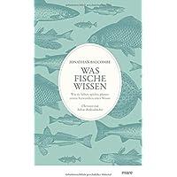 Was Fische wissen: Wie sie lieben, spielen, planen: unsere Verwandten unter Wasser