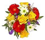 Blumenstrauß Blumenversand'Alles Gute' +Gratis Grußkarte+Wunschtermin+Frischhaltemittel+Geschenkverpackung