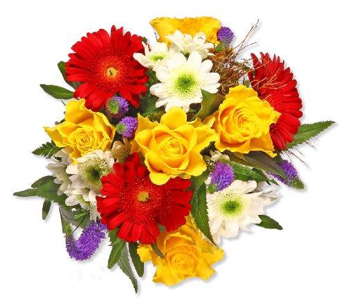 """floristikvergleich.de Blumenstrauß Blumenversand """"Alles Gute"""" +Gratis Grußkarte+Wunschtermin+Frischhaltemittel+Geschenkverpackung"""