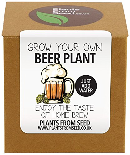 plants-from-seed-grow-your-own-beer-plant-kit
