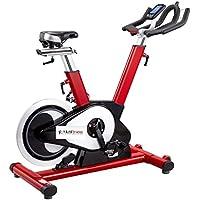 Bicicleta ciclo indoor profesional magnética,
