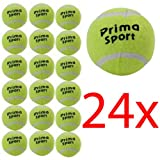 24 X TENNIS BALLS SPORT PLAY CRICKET DOG - Best Reviews Guide