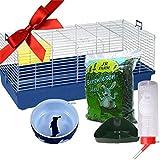 Enano de conejo jaula de interior–Juego de iniciación & accesorios