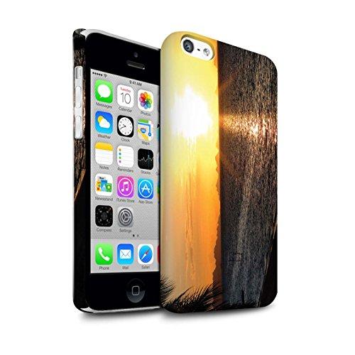 STUFF4 Matte Snap-On Hülle / Case für Apple iPhone 5C / Tropische Bäume Muster / Sonnenuntergang Kollektion Strand