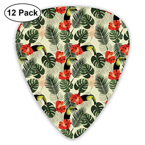 Celluloid Guitar Picks - 12 Pack,Abstract Art Colorful Designs,Cool Tropic Palm Leaves With Toucan Birds Flowers Tropicana Inspired Warm Climates,For Bass Electric & Acoustic Guitars.