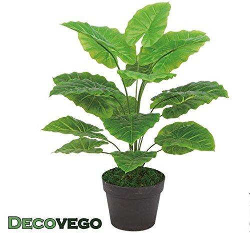 Decovego Aronstab Araceae Arum Taro Philodendron Kunstpflanze Künstliche Pflanze mit Topf 60cm