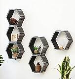 ZENGAI Die Wände Pflanzenregale Sechseck Kombination Blumenständer Multifunktion Ausstellungsstand Dekoriert, 10,4 Zoll lang und 9,2 Zoll hoch (größe : 6 pieces)