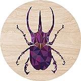 2D-Wandobjekt aus Holz | Käfer | Bunt | Polygon | Hornkäfer | Wandteller | Holzbild | Shabby-Look | Landhaus | Vintage | Holzobjekt | Deko | Holzdruck | Geschenk | ca. 40x40cm