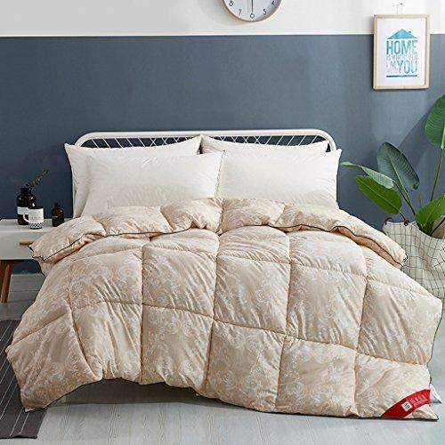 MMM L'automne et l'hiver Quilt Core Student Dortoir Double Thicker Gardez au chaud la literie d'hiver (taille : 220 * 240cm(4kg))