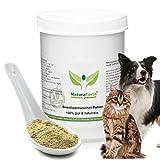 NaturaForte® Grünlippmuschel Pulver 500g DOSE für Haustiere