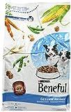 Beneful Gesunde Anfänge 1 x 3 kg Hundefutter Hunde-Trockenfutter