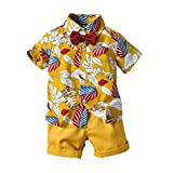 Shenye Toddler Baby Boy Short Sleeve Bow Tie Gentleman Leaf Bande De Fleur T-Shirt Tops+Shorts Outfits