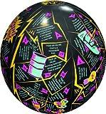 American Educational Prod. HUB1460 Alternative Energy Clever Catch Ball